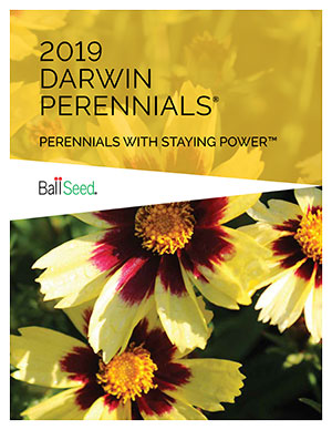 Darwin Perennials Ball Seed 2017 catalog